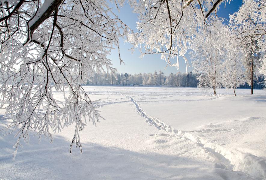 Winter Panorama mit Schnee